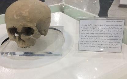 آثار باستانی کشف شده متعلق به «عصر آهن ۲» به موزه ملی کاشان رفت