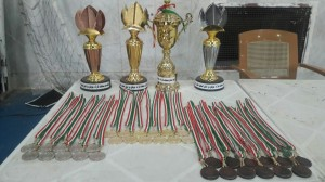 مسابقات استانی جوکای دو در فین کاشان (2)